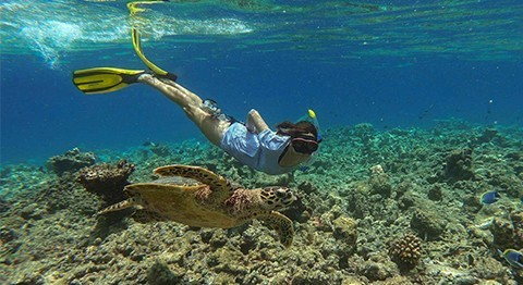 15 QUESTIONS WITH THE MALDIVES MARINE BIOLOGIST AT COCO BODU HITHI, SONIA VALLADARES