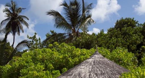 Coco palm sunset beach villa2613