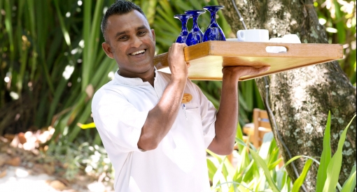 Coco palm dhuni kolhu cornus6424