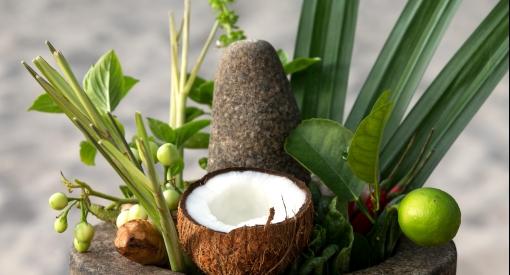 Coco palm dhuni kolhu cornus7350