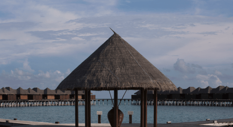 Coco Bodu Hithi in Pictures